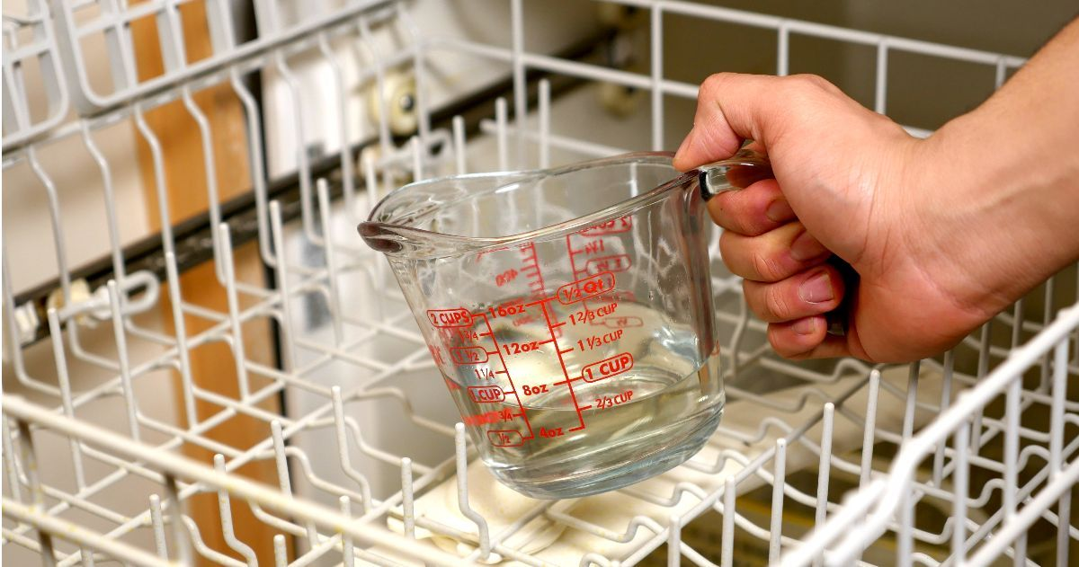 You may not think you need to clean your dishwasher but you really should. Here are 6 cleaning tips